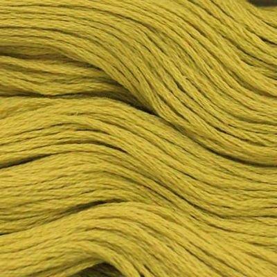 Presencia Finca 5388 Medium Olive Green