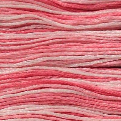 Presencia Finca 9335 Variegated Cotton Candy