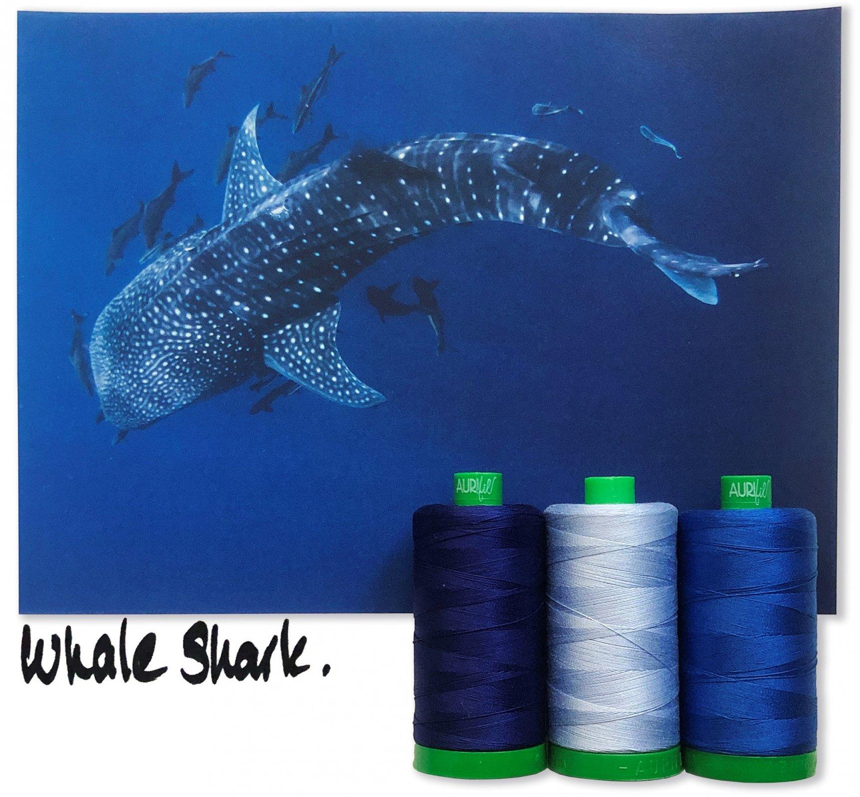 Aurifil 40wt Color Builder Mo. 6 Blue Whale Shark