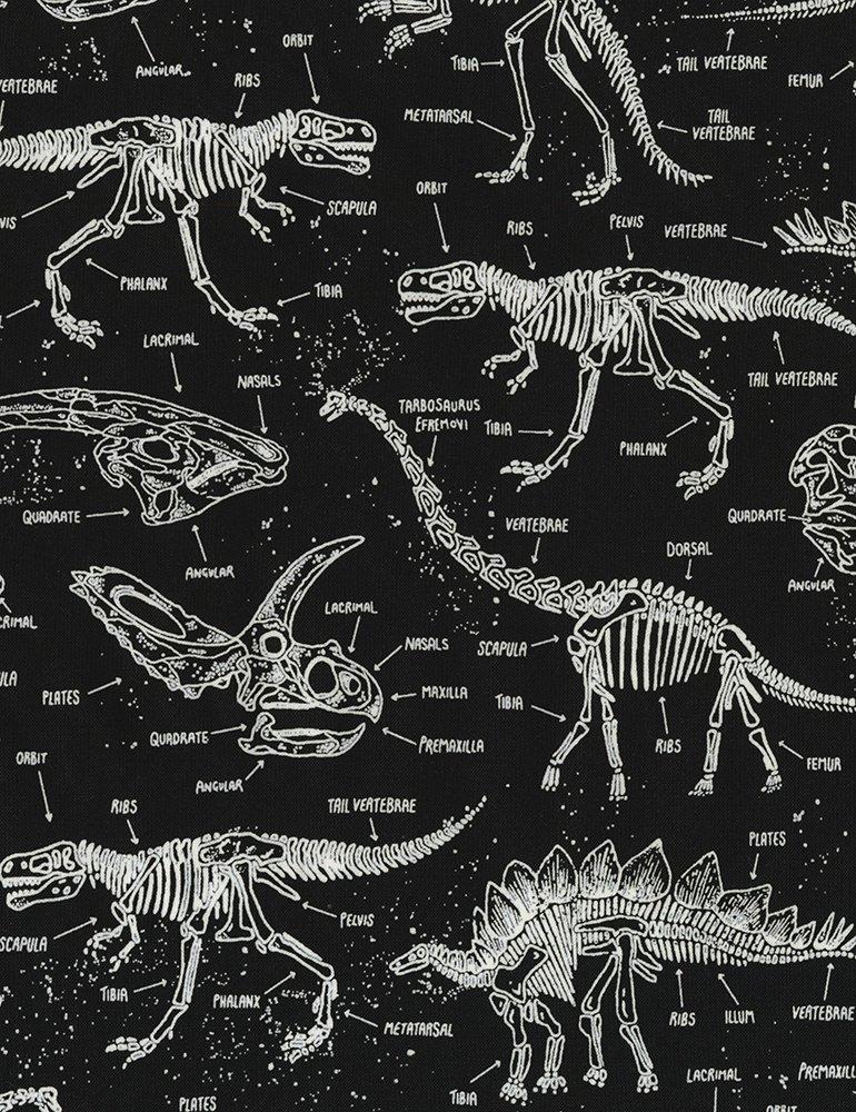 Dinosaur Skeletons Glow-In-The-Dark