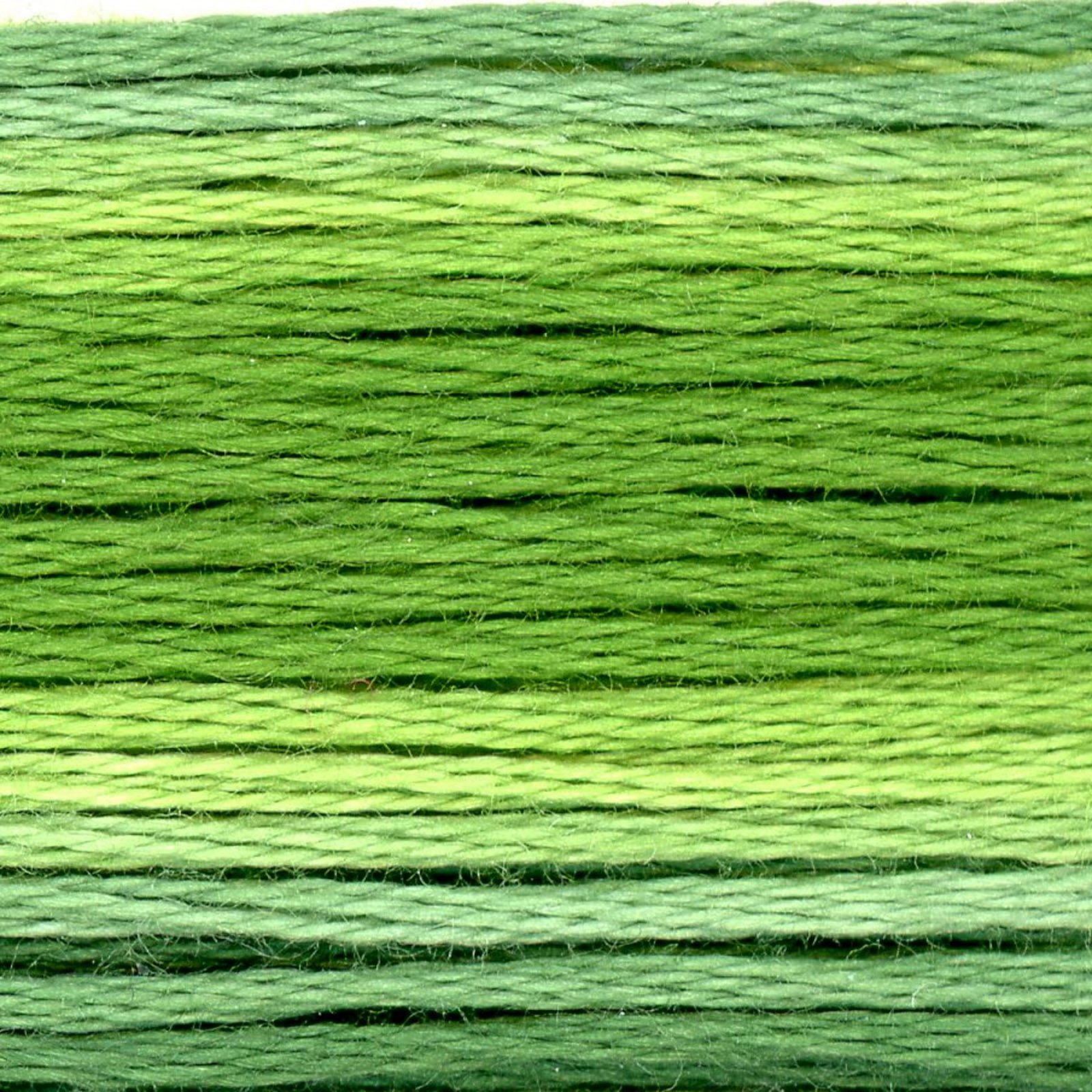 Cosmo Variegated 8024