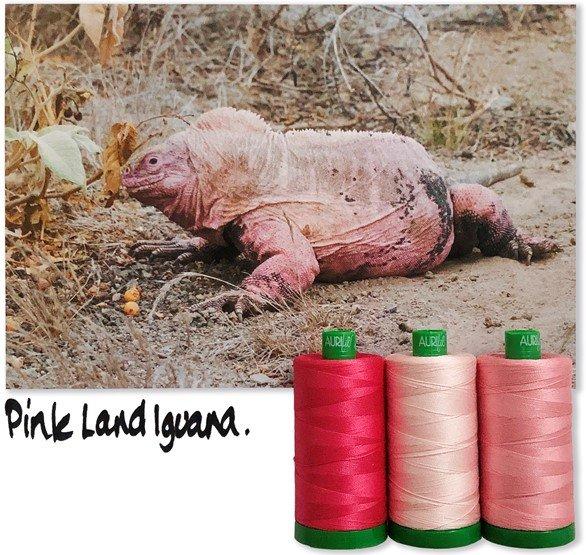 Aurifil 40wt Color Builder Mo. 5 Pink Land Iguana