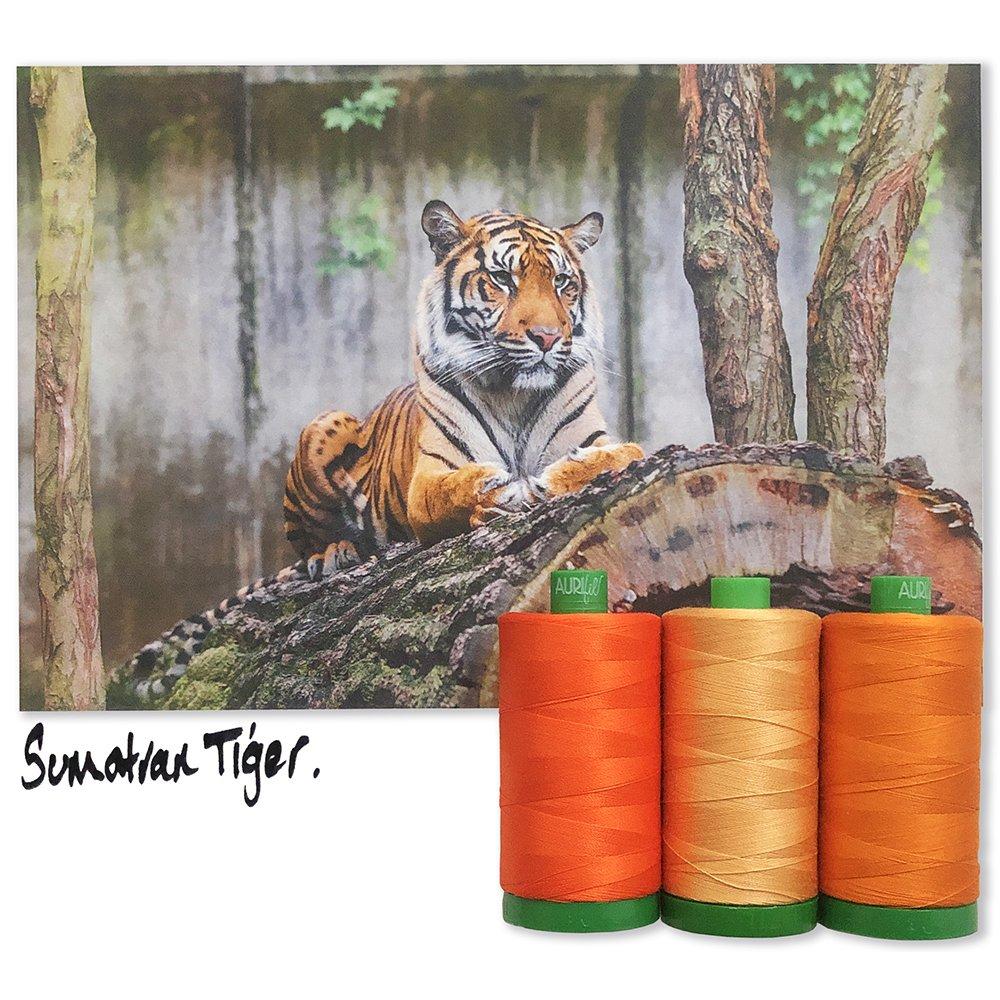Aurifil 40wt Color Builder Mo. 7 Sumatran Tiger