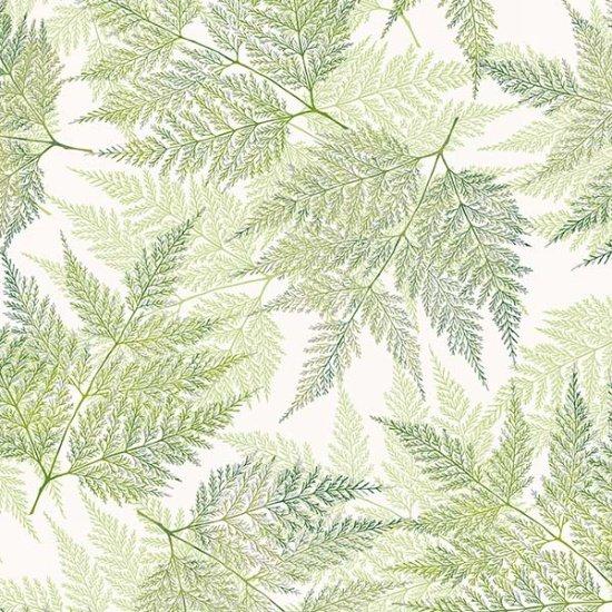 A Little Birdie Told Me Green Tea/Silver 211S