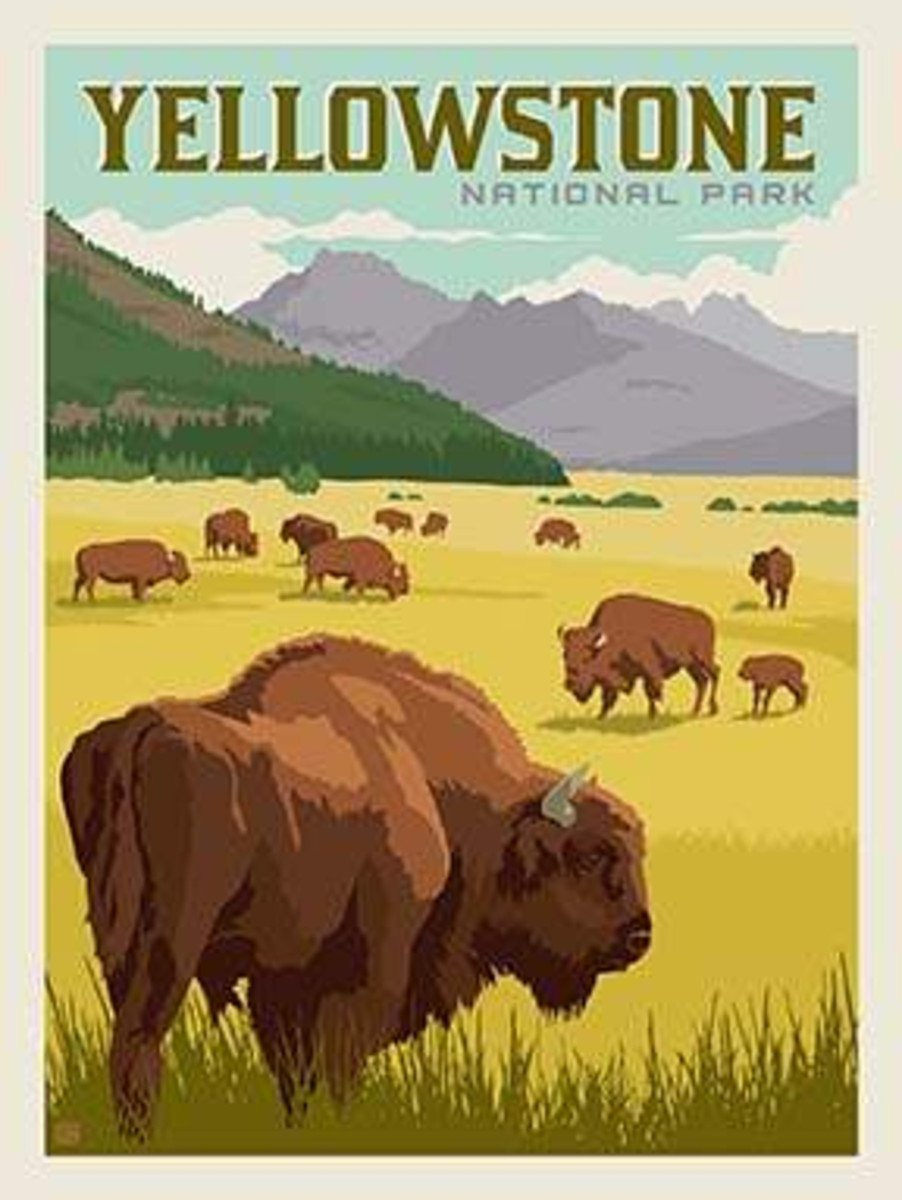 National Parks Panel Yellowstone P8790-YELLOWSTONE