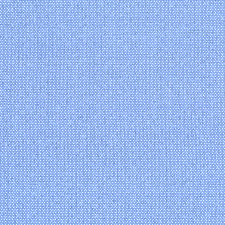 Essentials Micro Dot - Blue/White