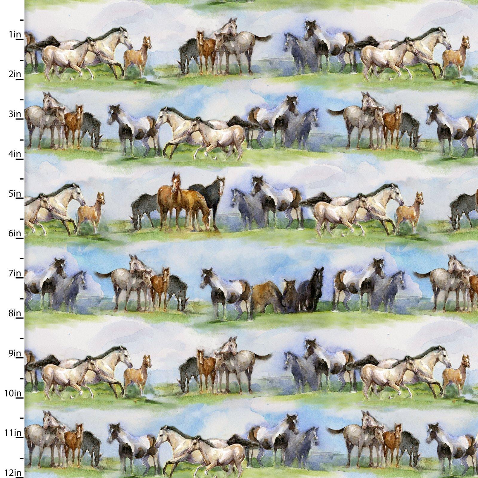 Sunflower Stampede - Horse Field Stripe