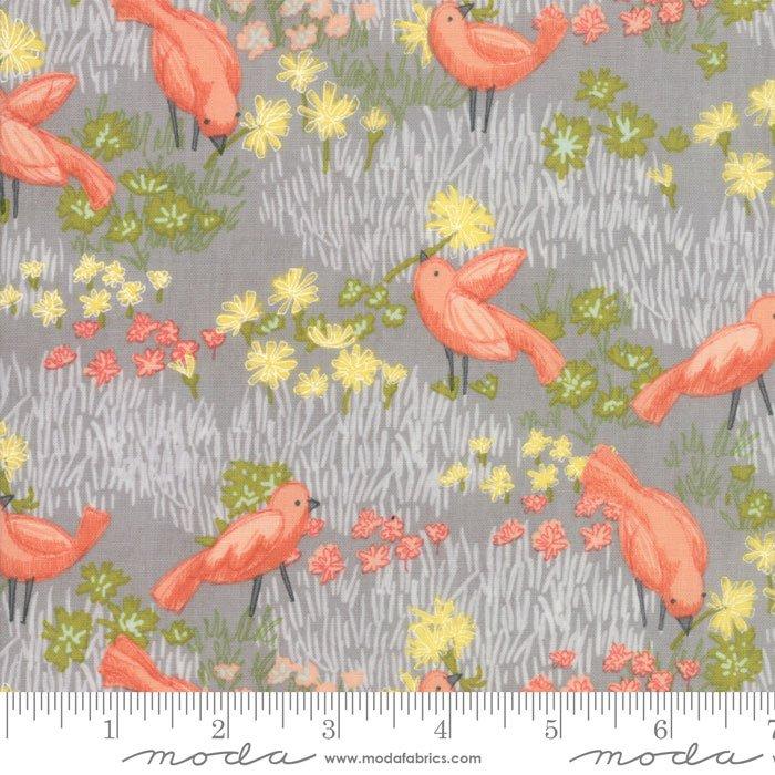 Dandi Annie Birds - Pebble