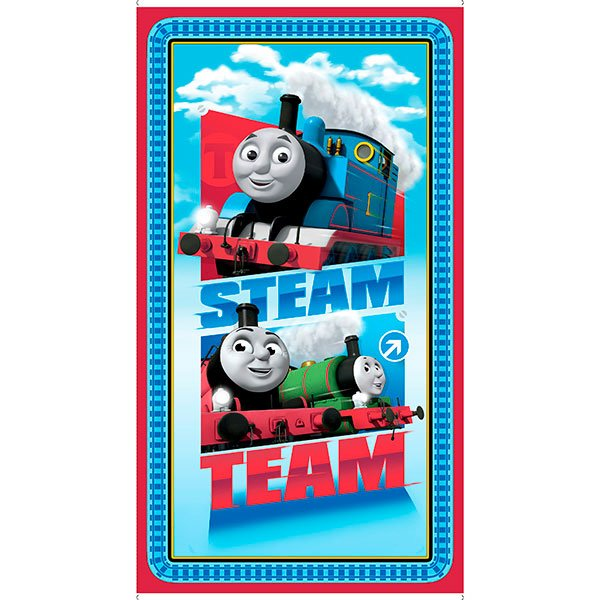 Steam Team Express Panel