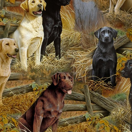 Loyal Loveable Labs - Labrador Scenic - Multi