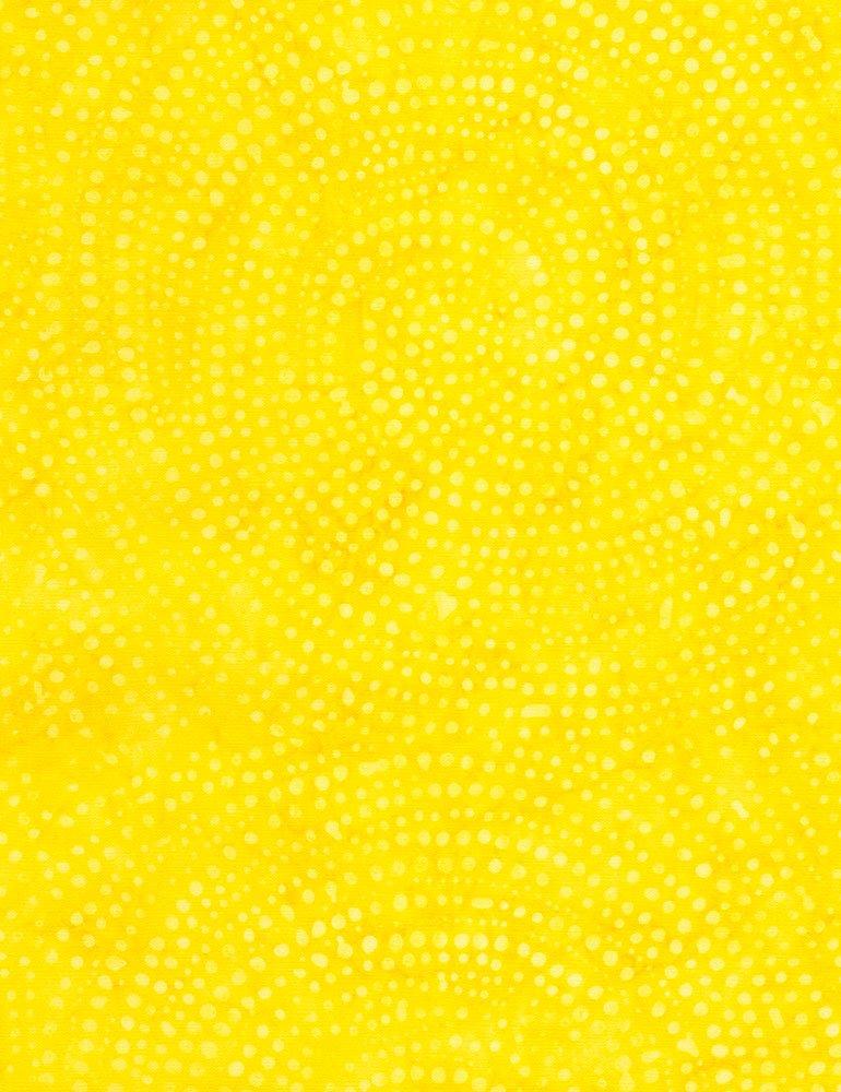 Tonga Dotty Spiral - Lemon