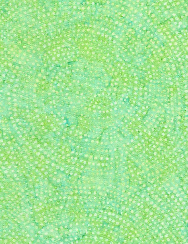 Tonga Dotty Spiral - Mint