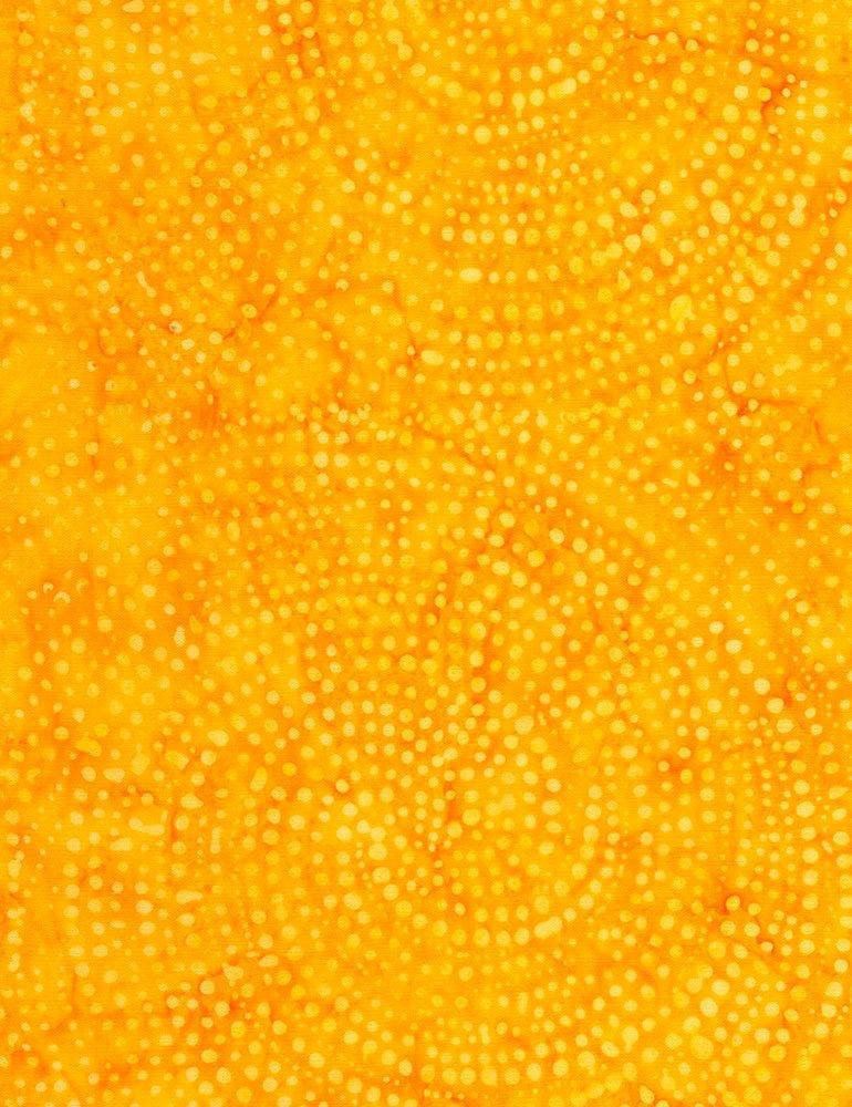 Tonga Dotty Spiral - Sun