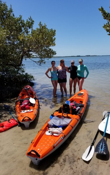 affordable kayak - eco - tours st pete beach