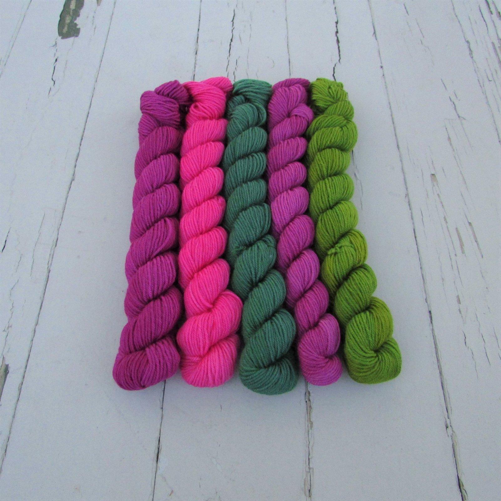 Lorna's Laces String Quintet Mini Skein Sets