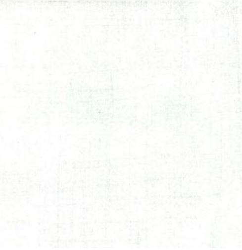 30150-150 Moda Grunge