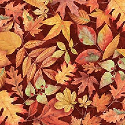 94079-385 Willmington Fall Colors