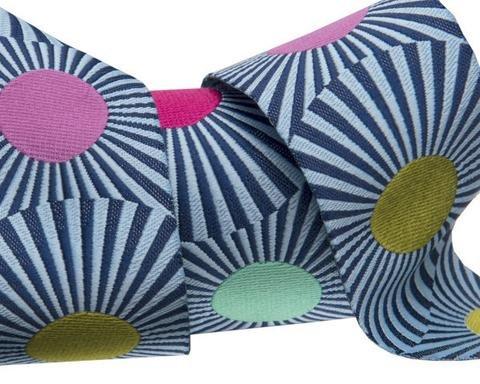 Renaissance Ribbons 7/8IN Navy Blue Stripes and Dots Tula Pink