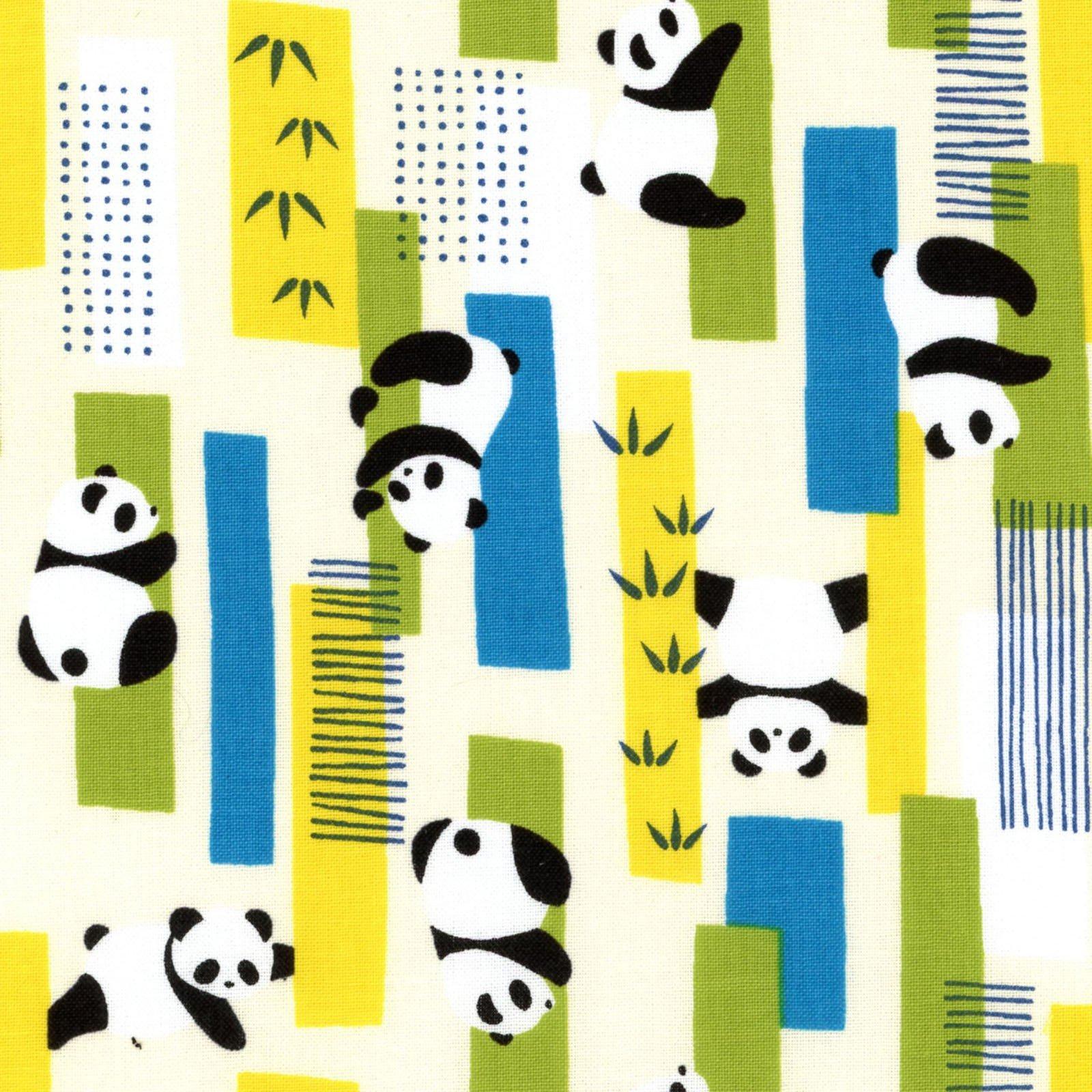 Cosmo Zoo Visit Pandas