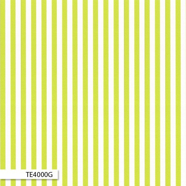 Ella's Basics Stripe Green