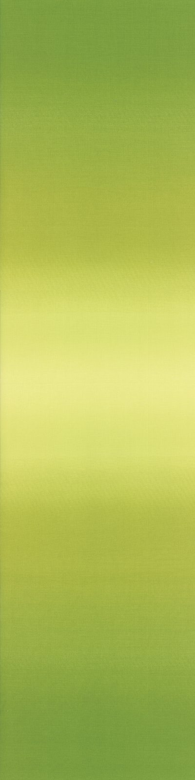 Ombre Lime Green 10800 18