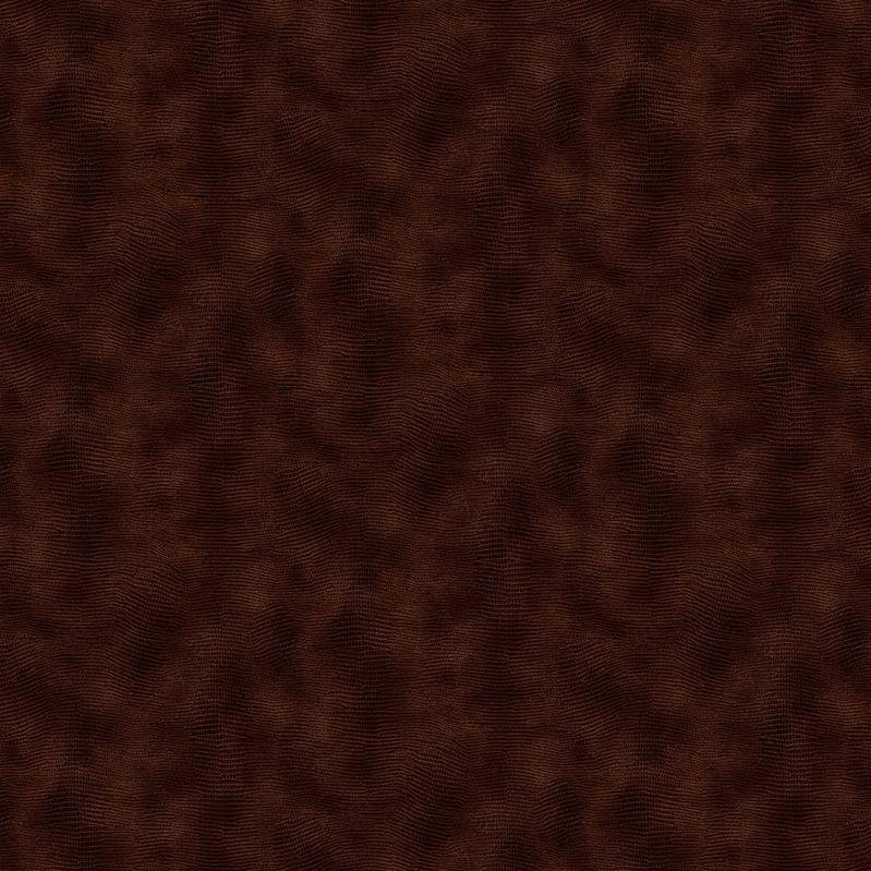 Equipoise 118 Wide Chocolate 183/200037