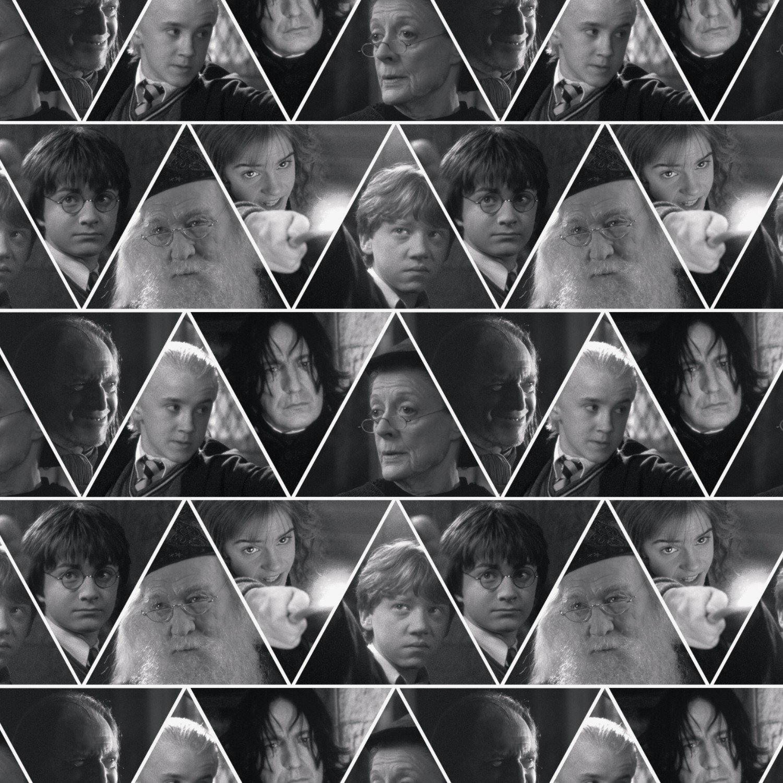 Harry Potter Triangles 2380206J-1