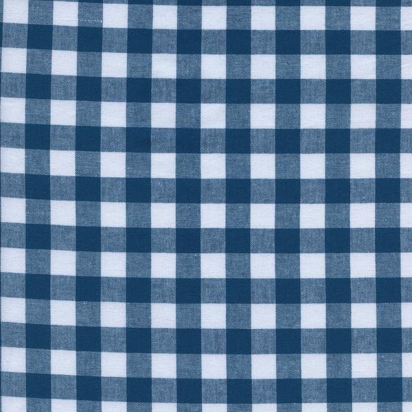 Checkers 1/2 Gingham in Teal 5091-005