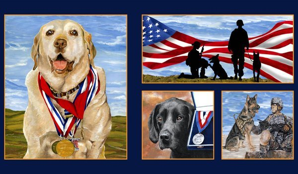 Paws of Valor 61115-20