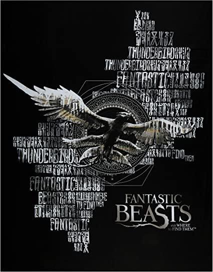 Wizarding World of Harry Potter - Fantastic Beasts Panel