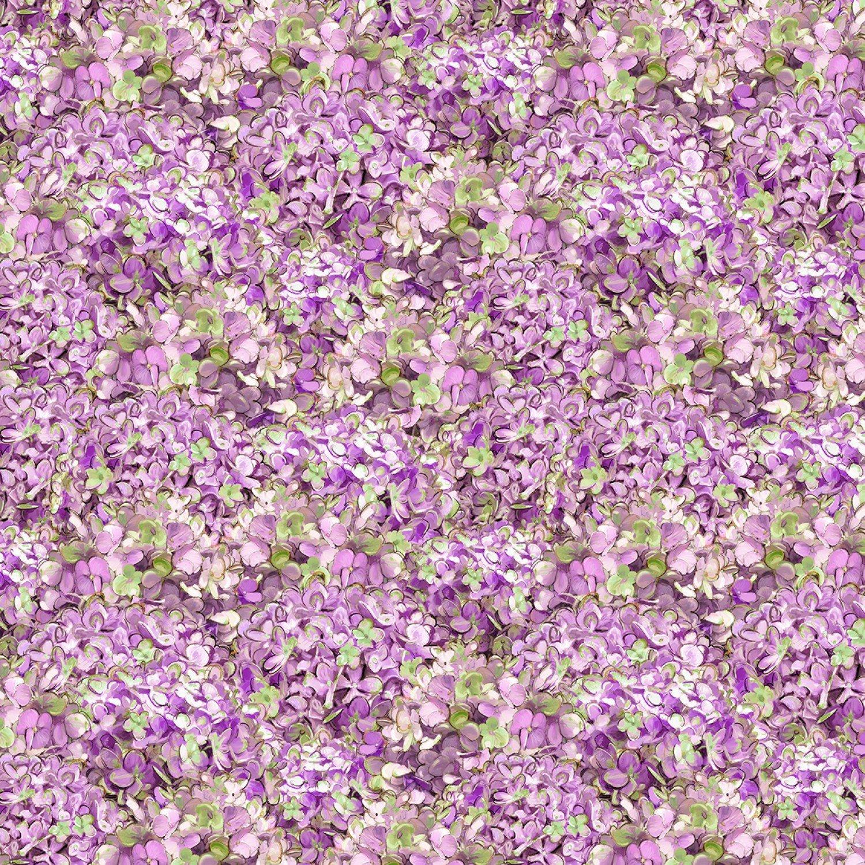 Hydrangea Dreams Packed Hydrangeas Purple 96439-671