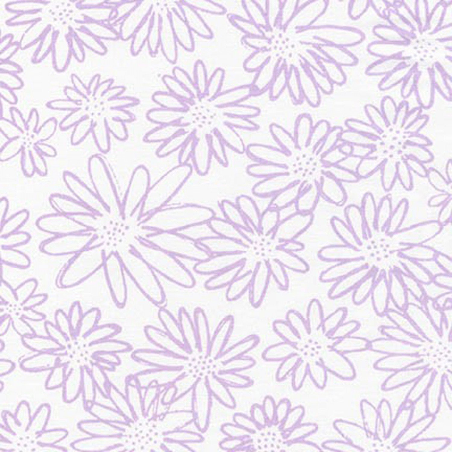 Blueberry Park Orchid AWI-15747-19