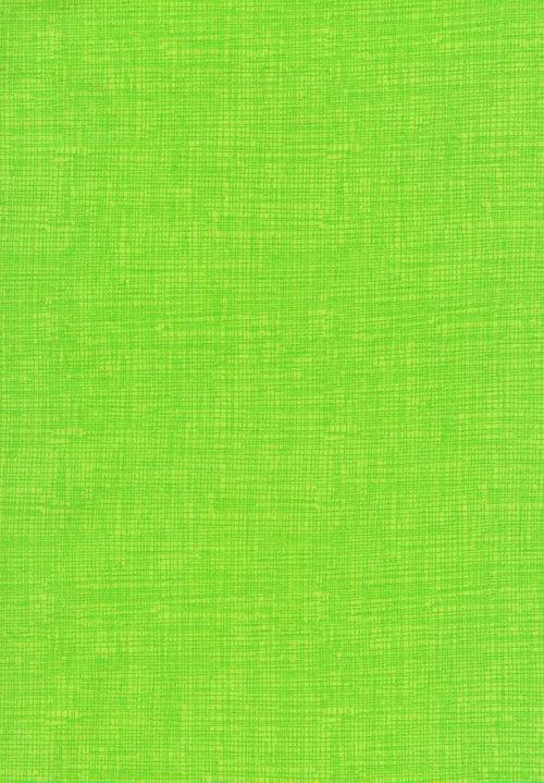 Ambrosia Sketch Basic C8224-Neon
