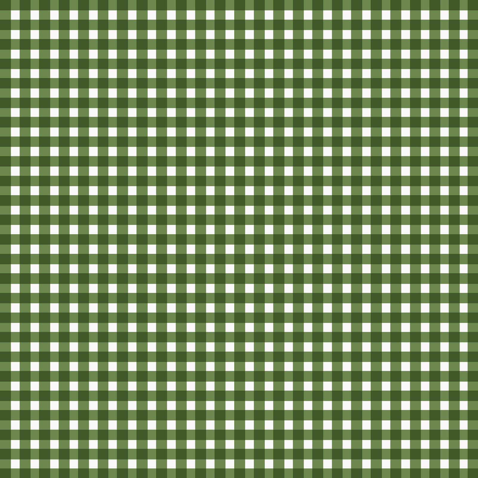 Beautiful Basics Check Green 2 610MGG2