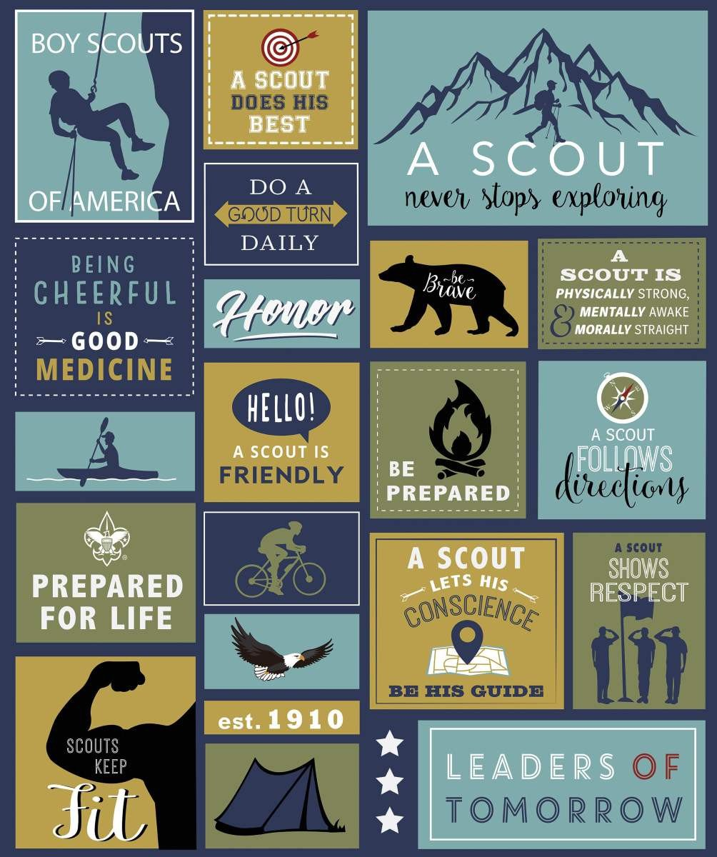 A Scout Is Panel Navy