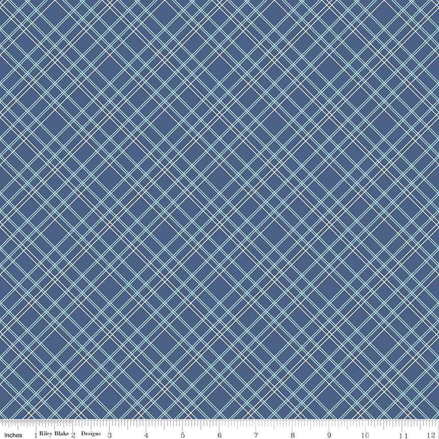 Bee Backings & Borders Plaid Blue 107/108 Wide WB6422-BLUE