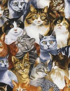 Timeless Treasures Fabrics Cats C5484