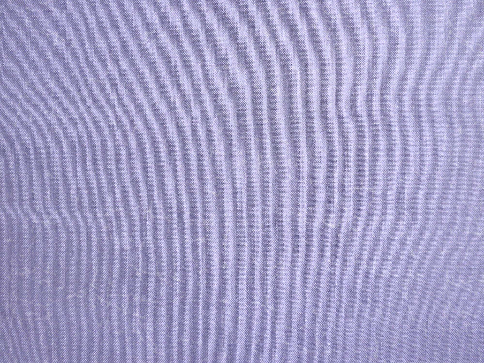 RJR Fabrics Adventures Lavender 1683 004