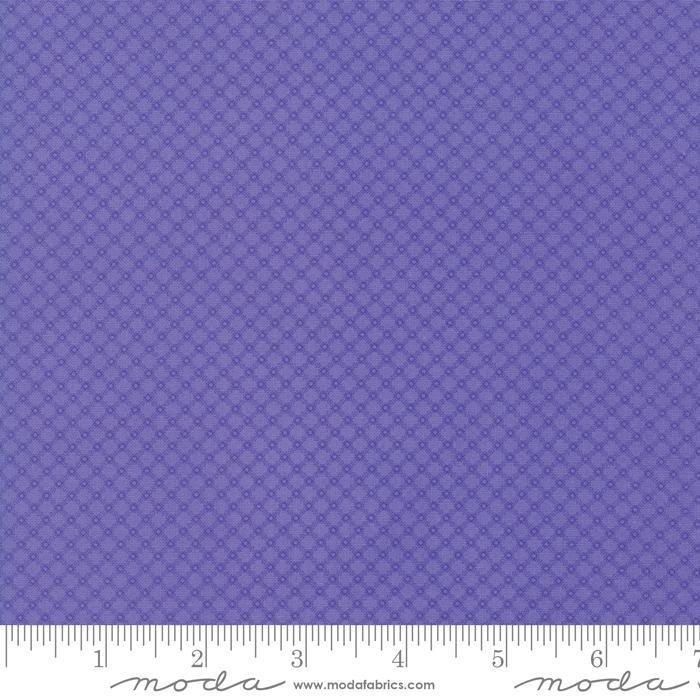 Fiddle Dee Dee Purple