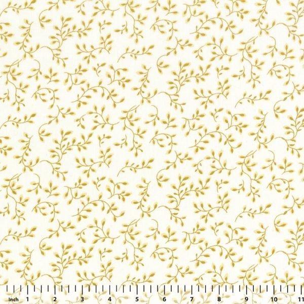 Folio - Tans on Cream Background