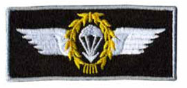 Airborne Badge Iron on Patch