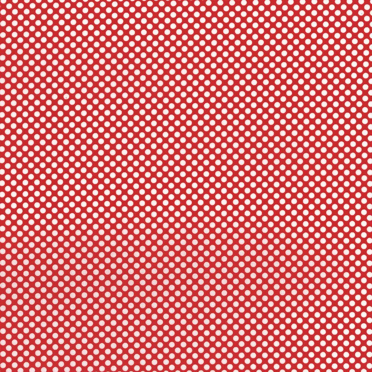 Dots & Stripes. Dot Com. Amaryllis