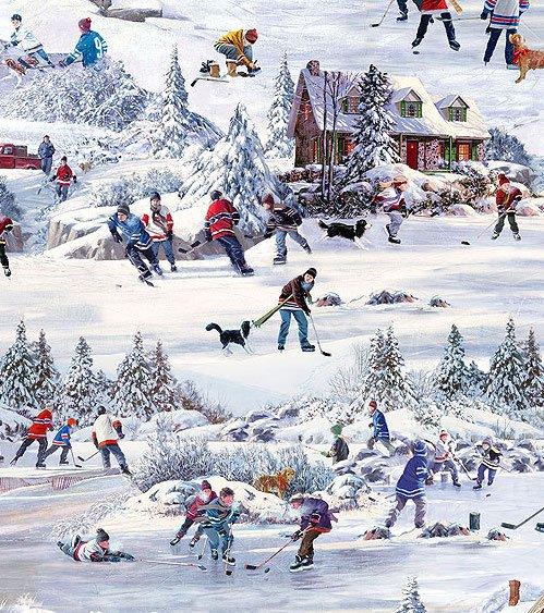 Northcott. Hometown Hockey. Scenic Digitally Printed