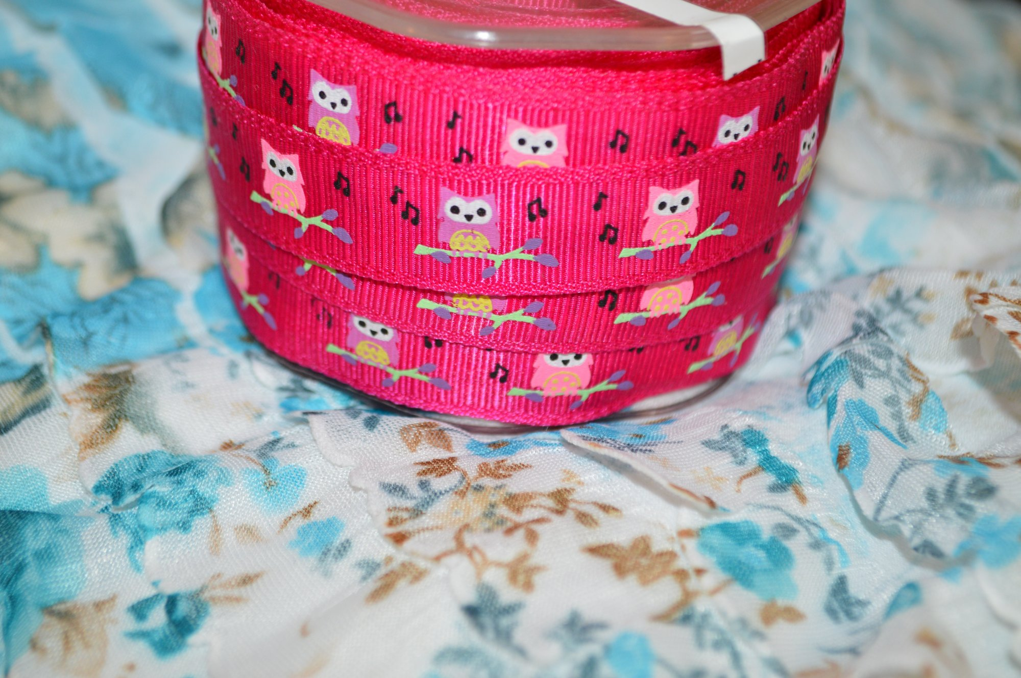 Musical Owl Print Ribbon