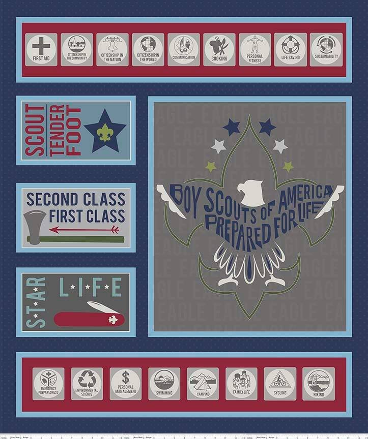 Modern Scouting Path to Eagle Panel Navy
