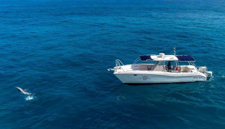 Private scuba diving boat