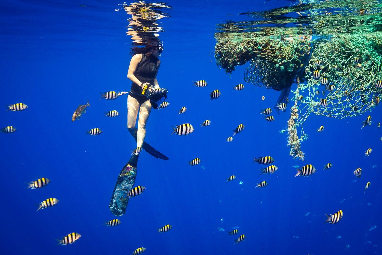 Kona Underwater Shootout Entry Fee 2019