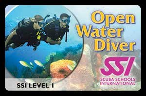 SSI Open Water Referral