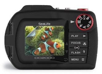 DC2000 Screen Shield Protector