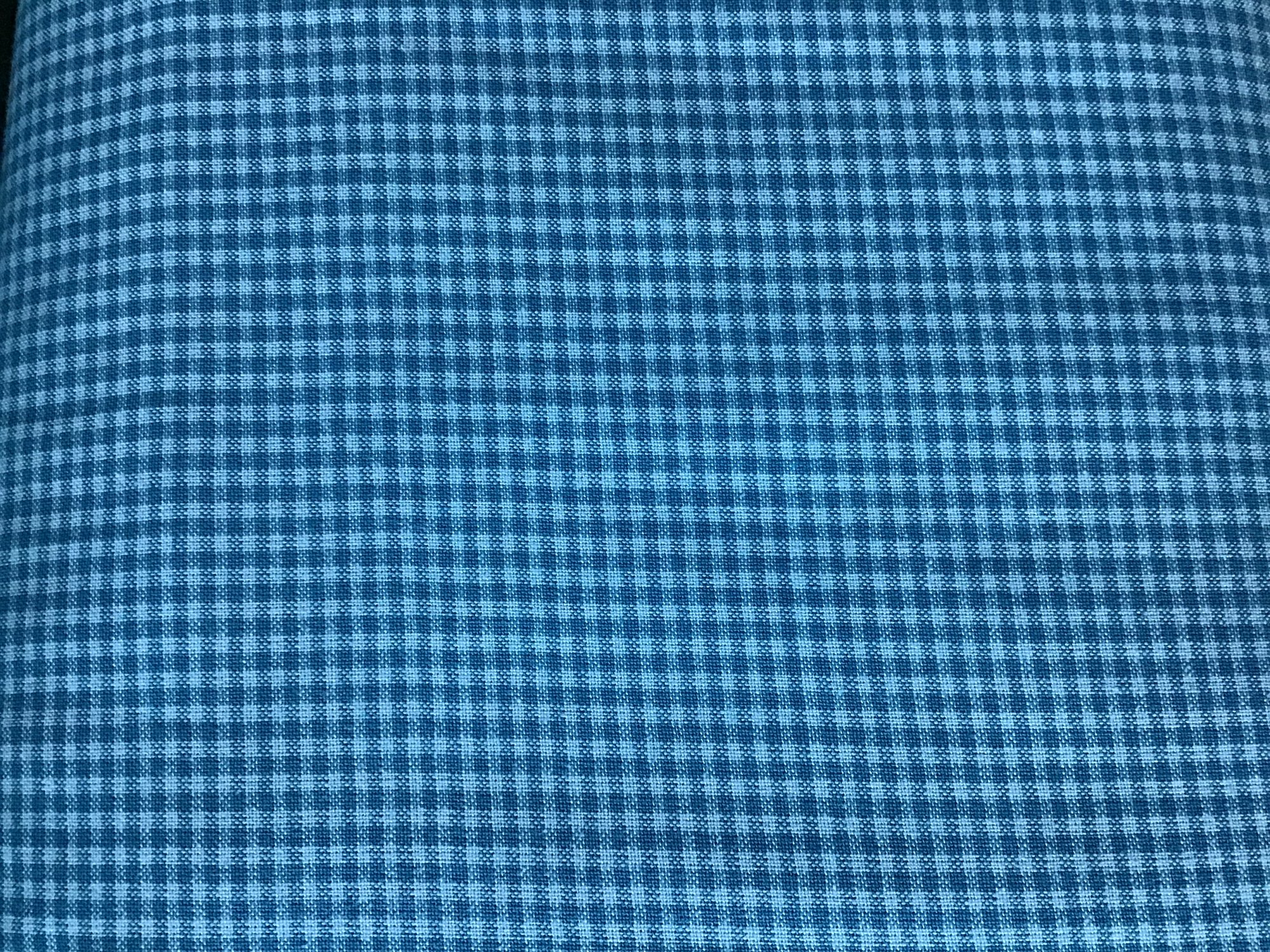 Warp & Weft II Premium Yarn Dye Mini Gingham Blue